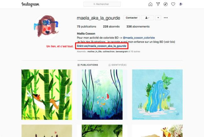 Instagram - un unique lien dans la biographie